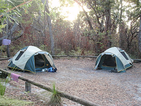 Relax in our homely campsites within the Gread Sandy National Park