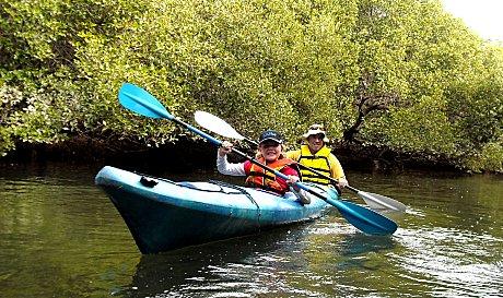 Dolphin Sanctuary Kayaking Tour AM