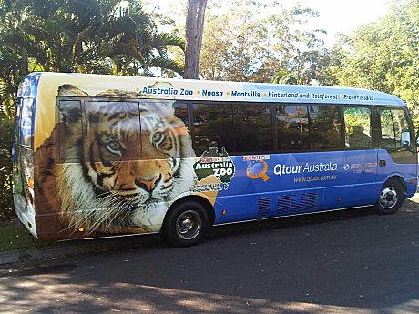 Qtour Bus